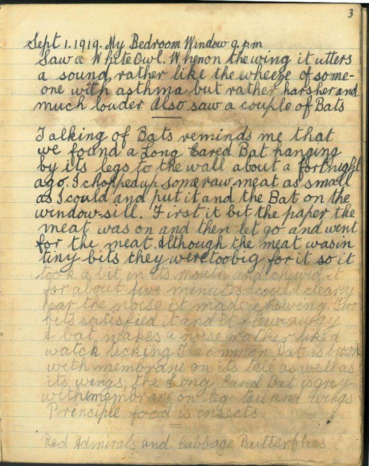 1st September 1919