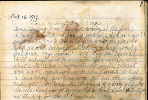 Viola Stirling's Nature Diary, reproduced with permission of Gargunnock Estate Trust