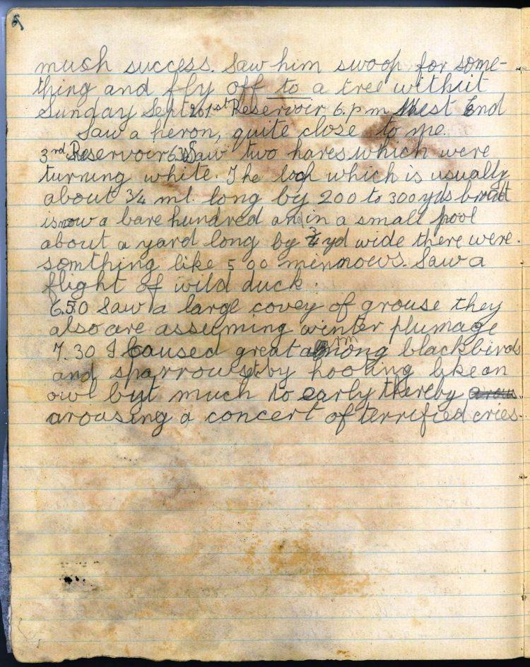 Diary entry for 21st September 1919