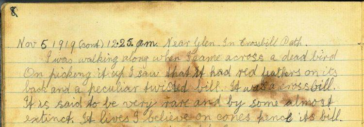 Diary Entry 5th November 1919