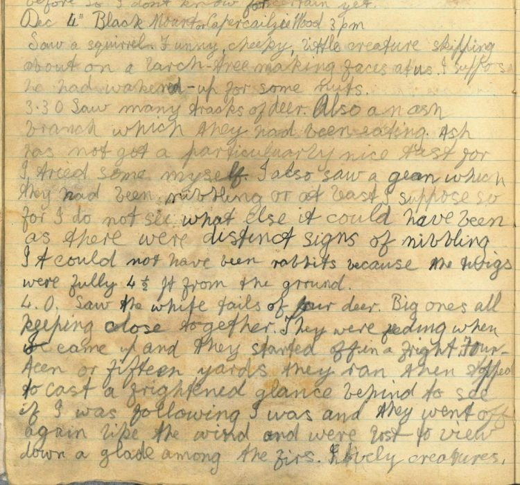 Diary entry for 4th December 1919