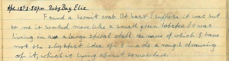 Diary entry 12th April 1920