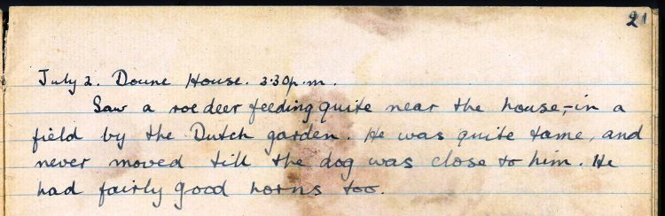 PD100, Viola Stirling's nature diary, 2 Jul 1921. Reproduced with permission of Gargunnock Estate Trust