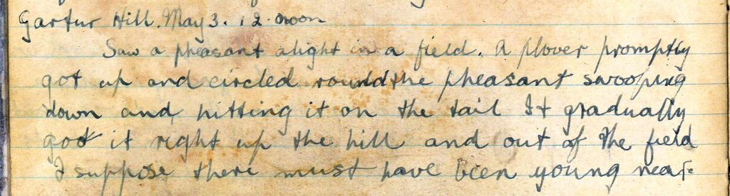 PD100, Viola Stirling's nature diary, 3 May 1921. Reproduced with permission of Gargunnock Estate Trust