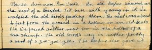 Diary Entry for 30th May 1921