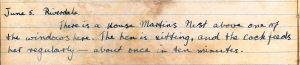 Diary entry for 5th June 1921