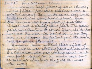 PD100, Viola Stirling's nature diary, 20 Dec 1921. Reproduced with permission of Gargunnock Estate Trust