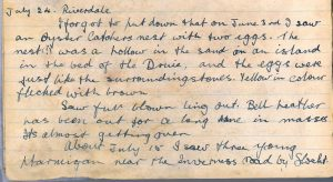 PD100, Viola Stirling's nature diary, 24 Jul 1921. Reproduced with permission of Gargunnock Estate Trust