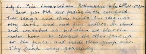 PD100, Viola Stirling's nature diary, 6 Jul 1921. Reproduced with permission of Gargunnock Estate Trust