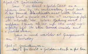 PD100, Viola Stirling's nature diary, 12 Apr 1922. Reproduced with permission of Gargunnock Estate Trust
