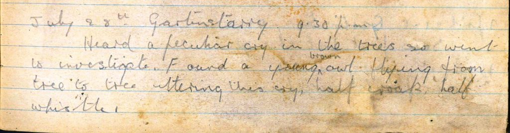 PD100, Viola Stirling's nature diary, 28 Jul 1922. Reproduced with permission of Gargunnock Estate Trust