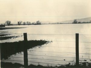 Flooding at Riverside 18th January 1909
